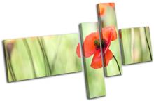 Poppy Field Flowers Floral - 13-1538(00B)-MP13-LO